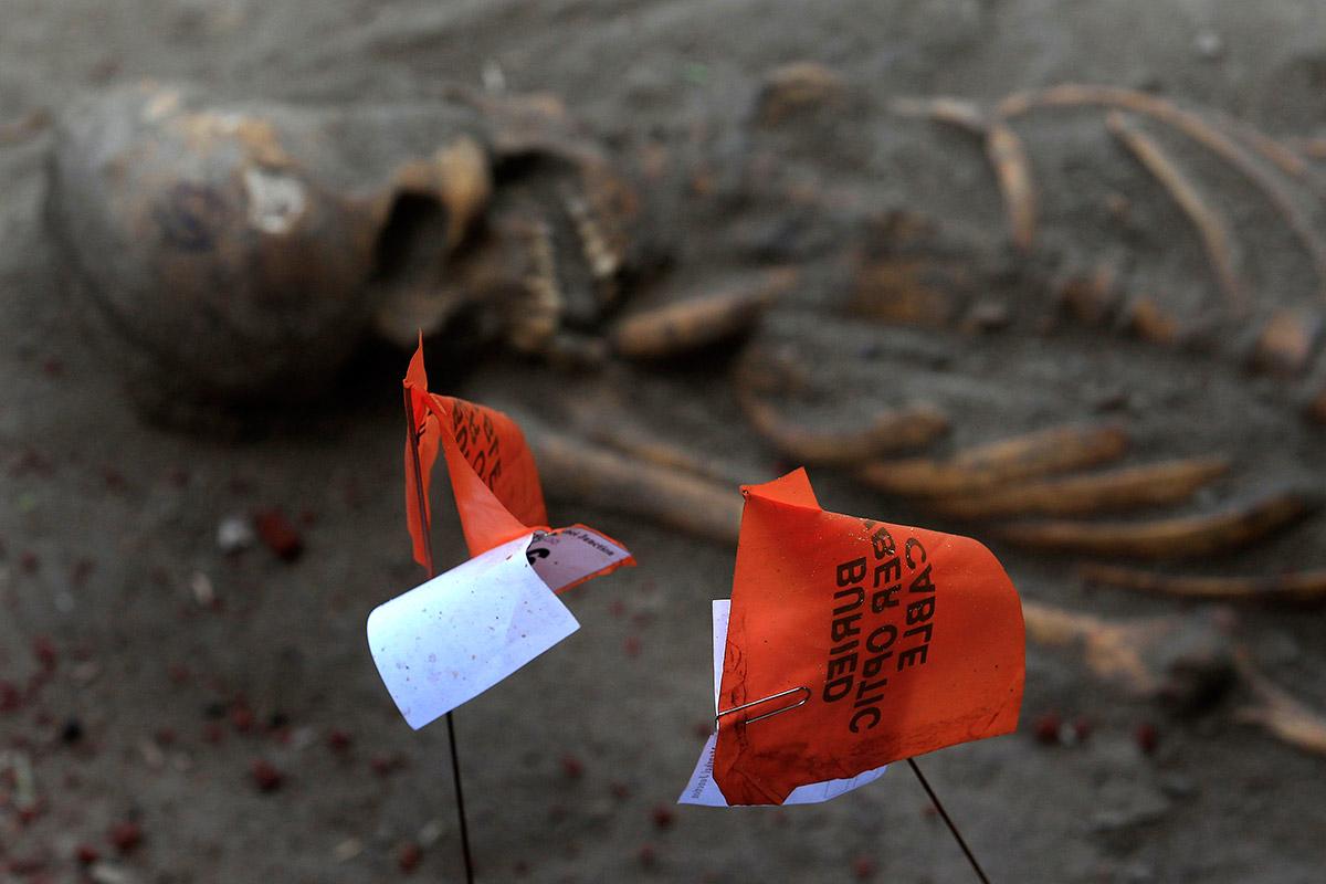 sri lanka skeleton