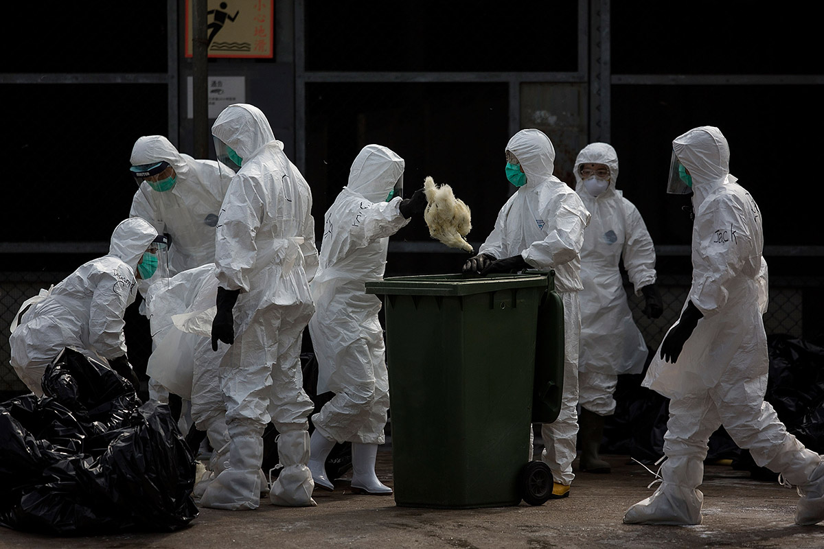 High security bio labs fumbling with deadly anthrax bird flu germs