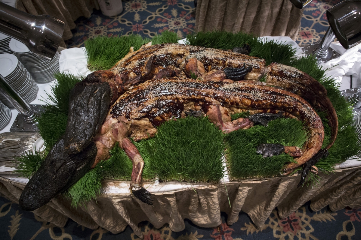Weirdest Images of the Week from Around the World