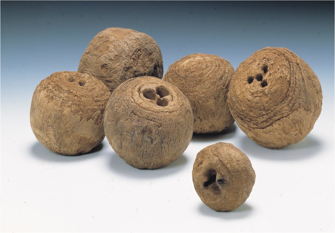 Tudor bowling balls were found at the remains of a medieval manor house in Stepney Green