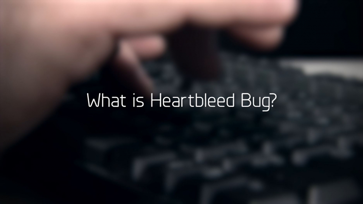 What is Heartbleed Bug?