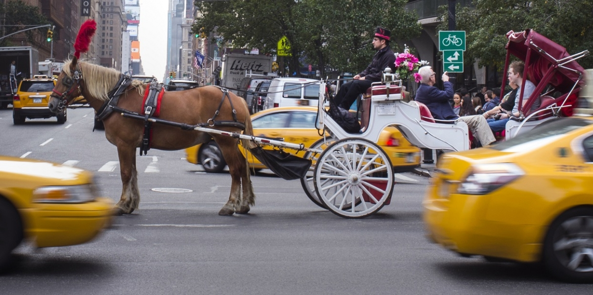 New York horse-drawn carriages