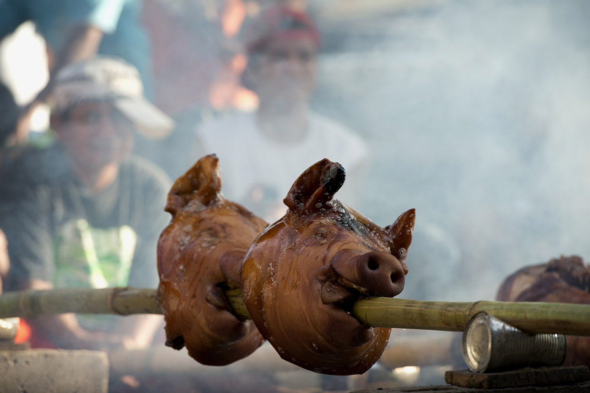 philippines saint john roasted pigs