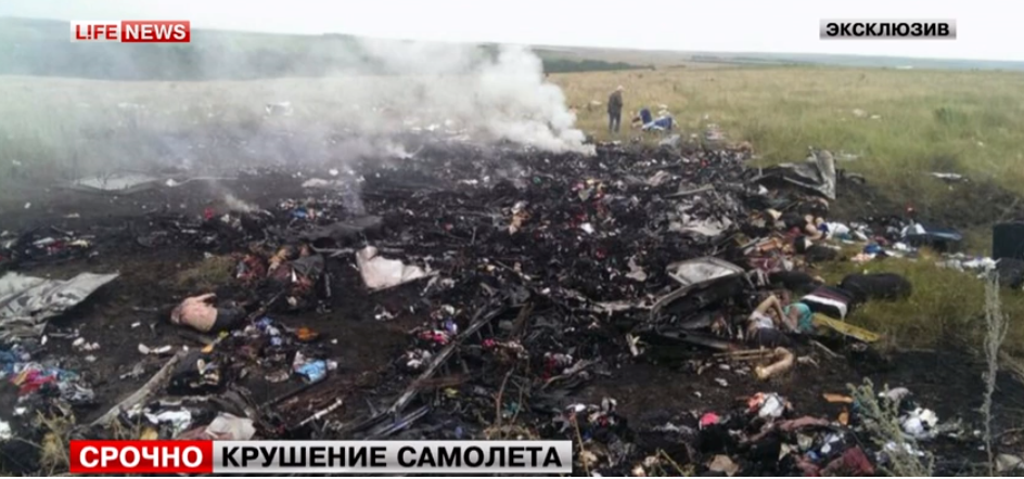First Photos of Malaysia Airlines MH17 Boeing 777 Crash in Ukraine