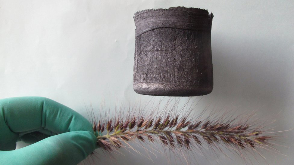 Graphene aerogel resting on a delicate plant