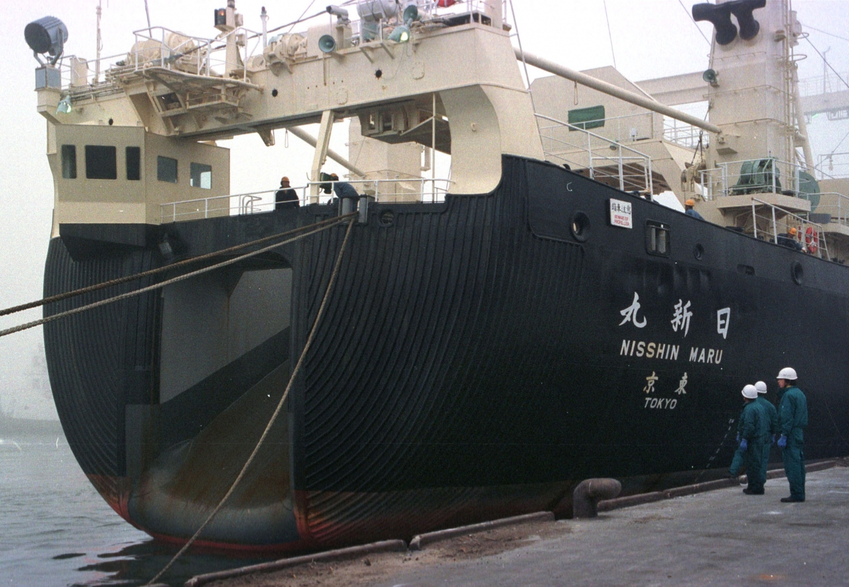MV Nisshin Mar
