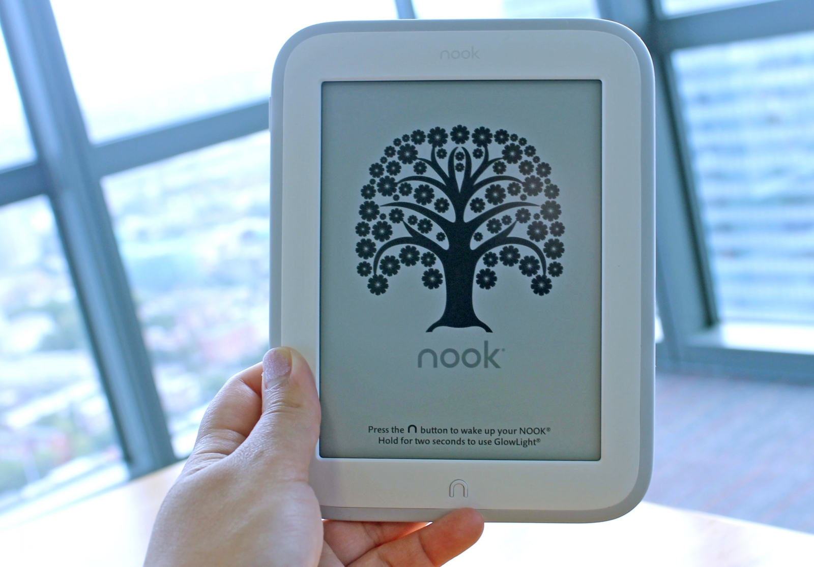 Nook GlowLight 1