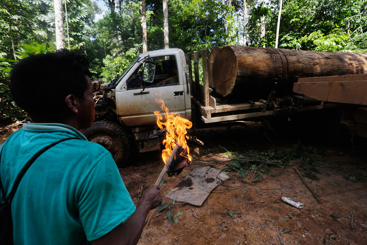 A Ka'apor man prepares to set fire to a logging truck