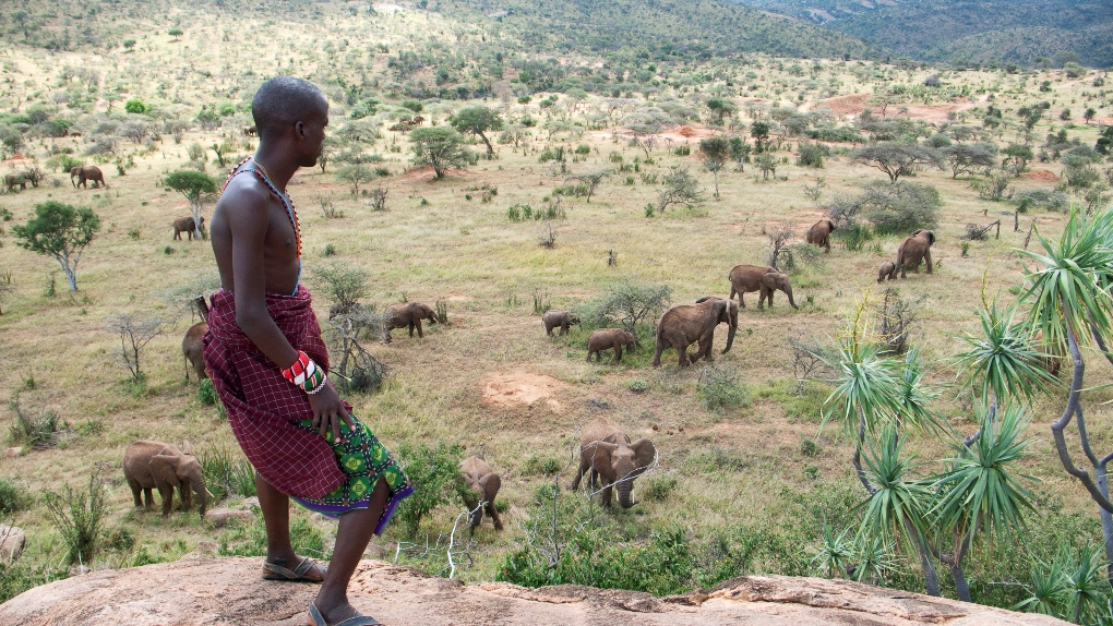 kenyas nature based tourist industry and sustainable tourism in the developing world International tourism, receipts (current us$) from the world bank: data.