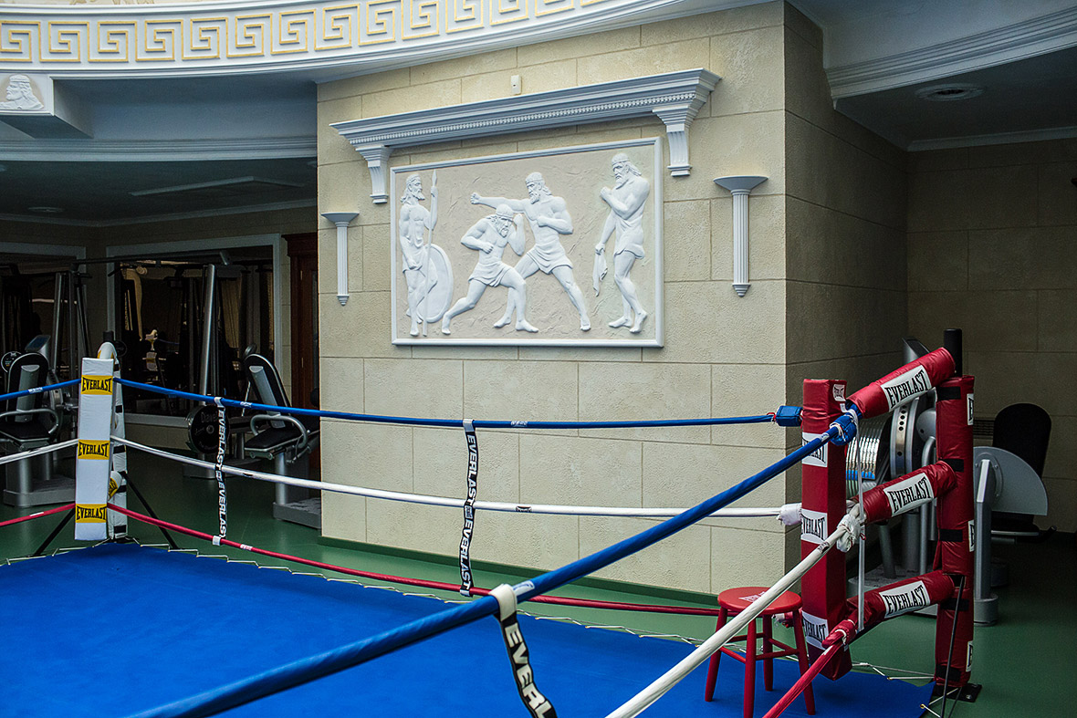 Фото | Боксерский ринг в резиденции Януковича в Межигорье