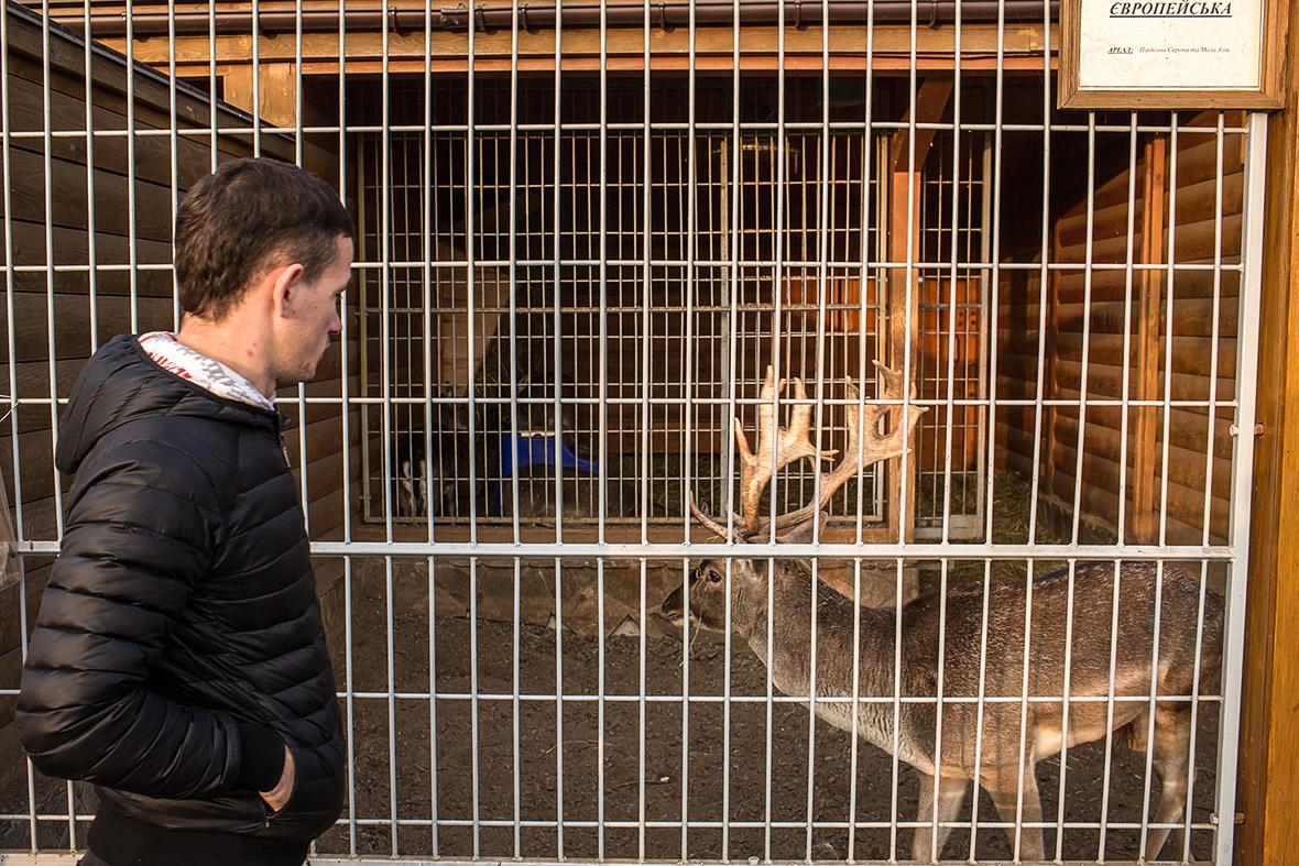 Фото | Вольеры с животными у Януковича в Межигорье