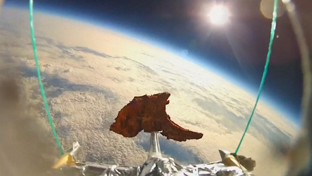 Four Friends Send a Lamb Chop into Space