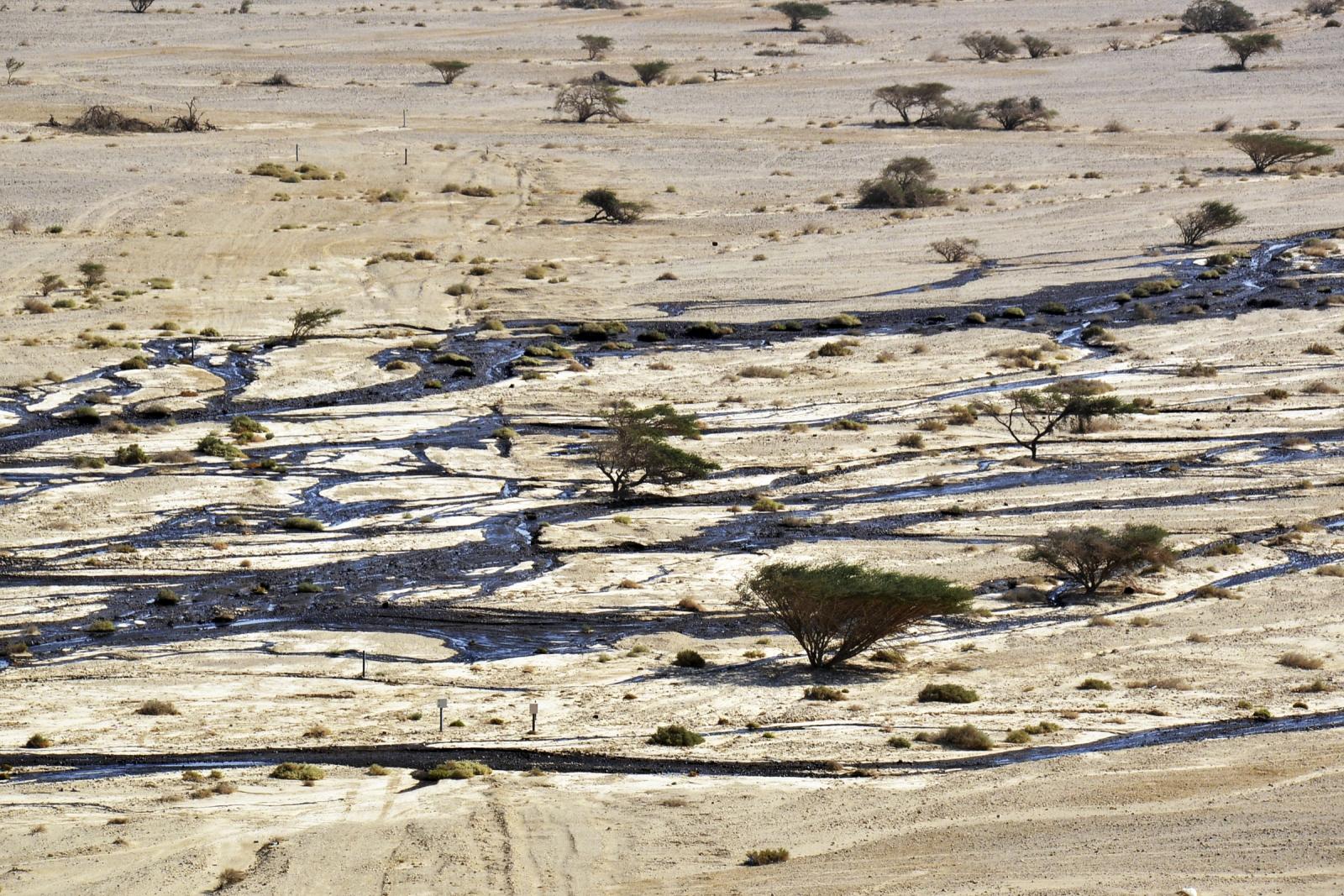 israel oil spill
