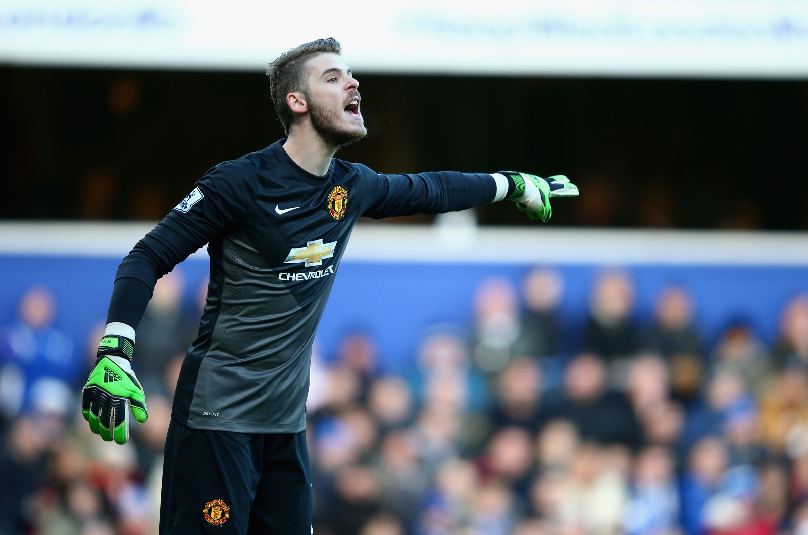 David to hand deal  to De United fend Manchester Gea bumper