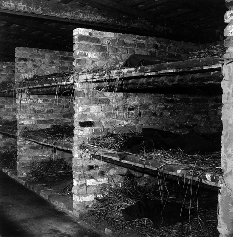 essays on auschwitz concentration camp He accounts that millions of jews were just murdered and cremated upon being deported to the concentration camps essay sample on survival in auschwitz.