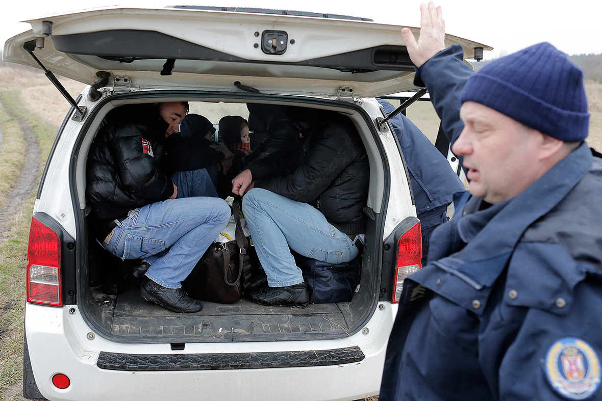 Illegal migrants detained at Serbian - Hungarian border