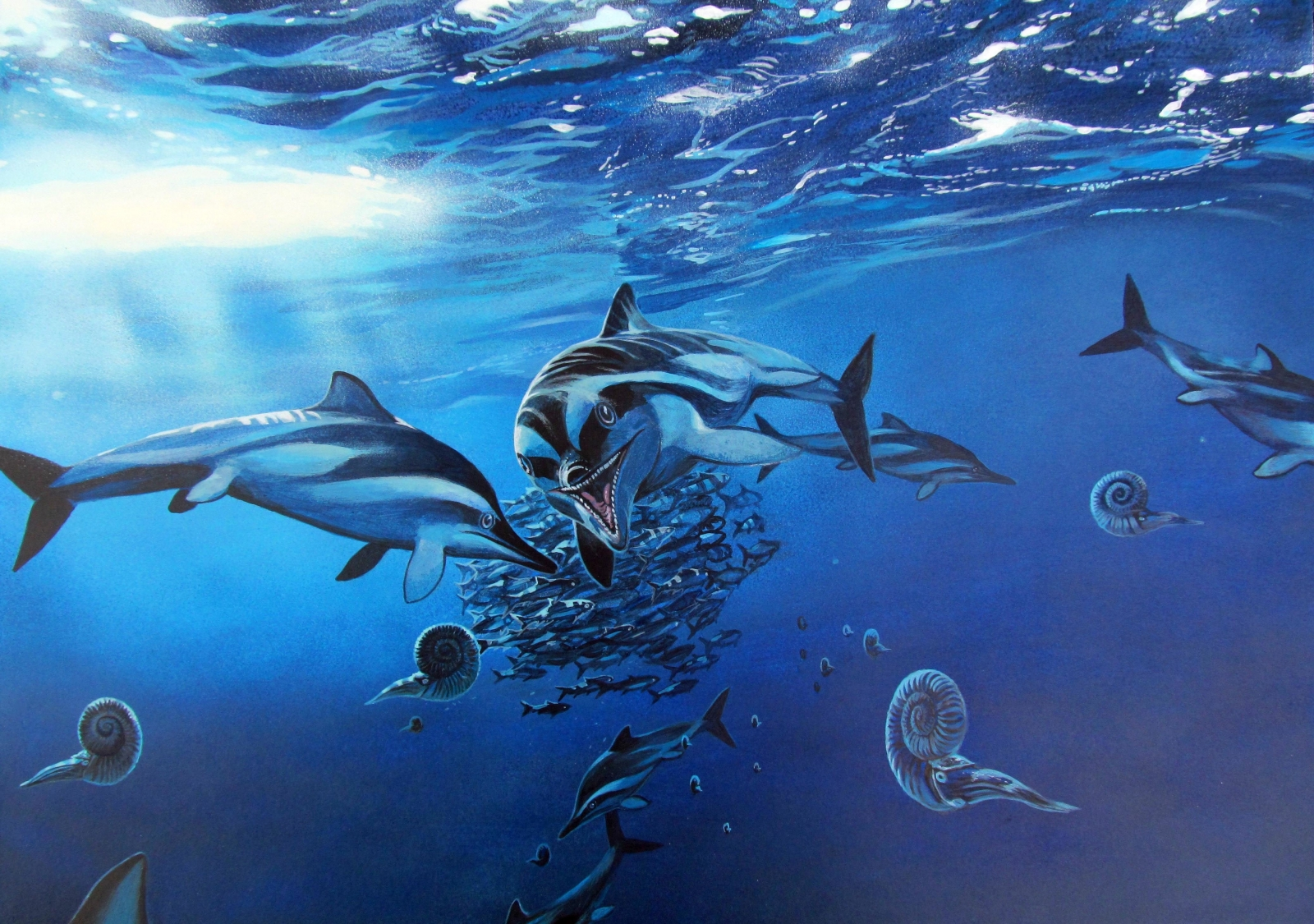 First new ichthyosaur species for 130 years discovered ... Латимерия