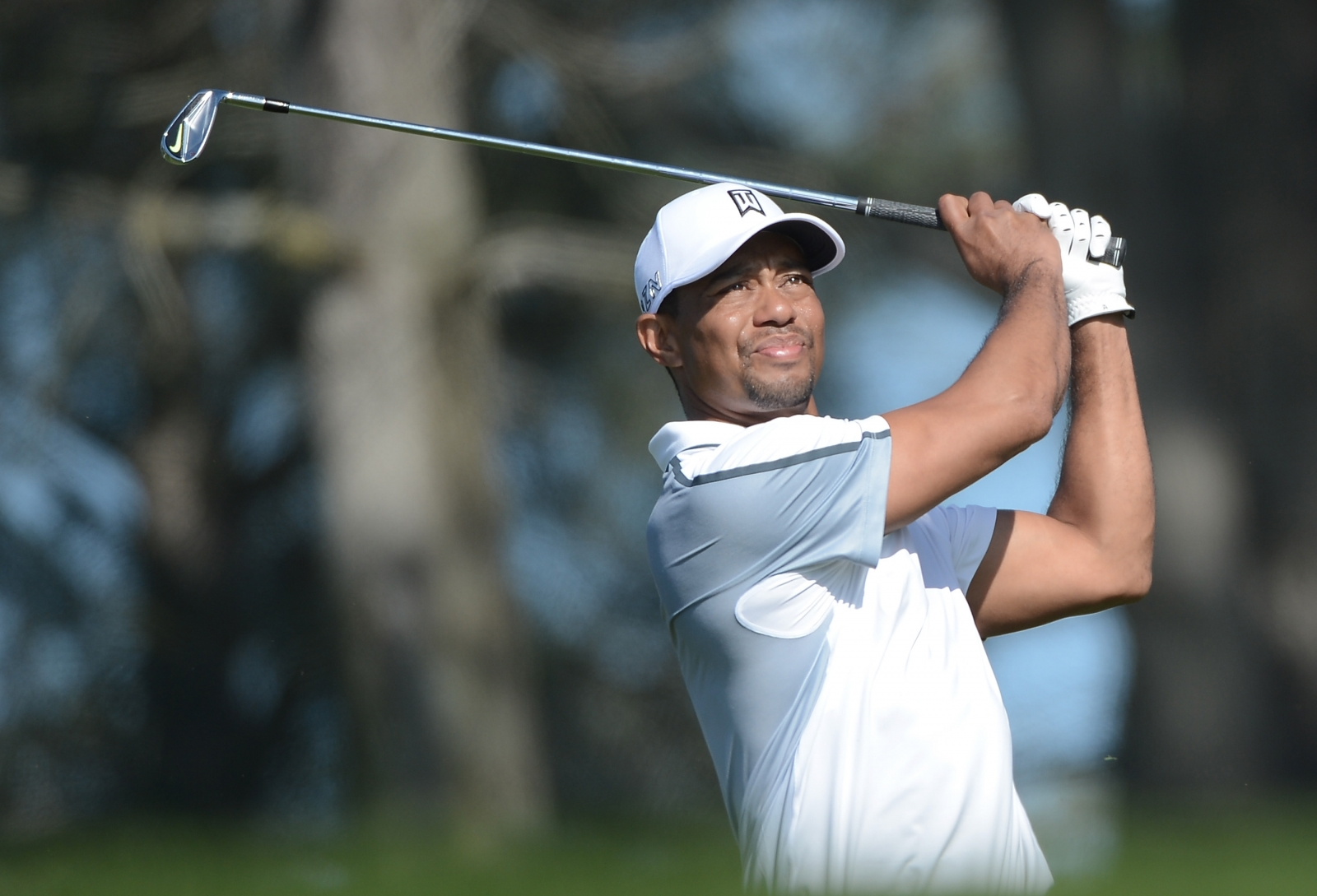 did tiger woods have affair with fellow golfer jason