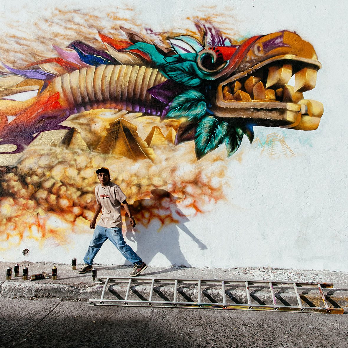 Sony world photography awards 2015 winners are finally for Arte mural en mexico