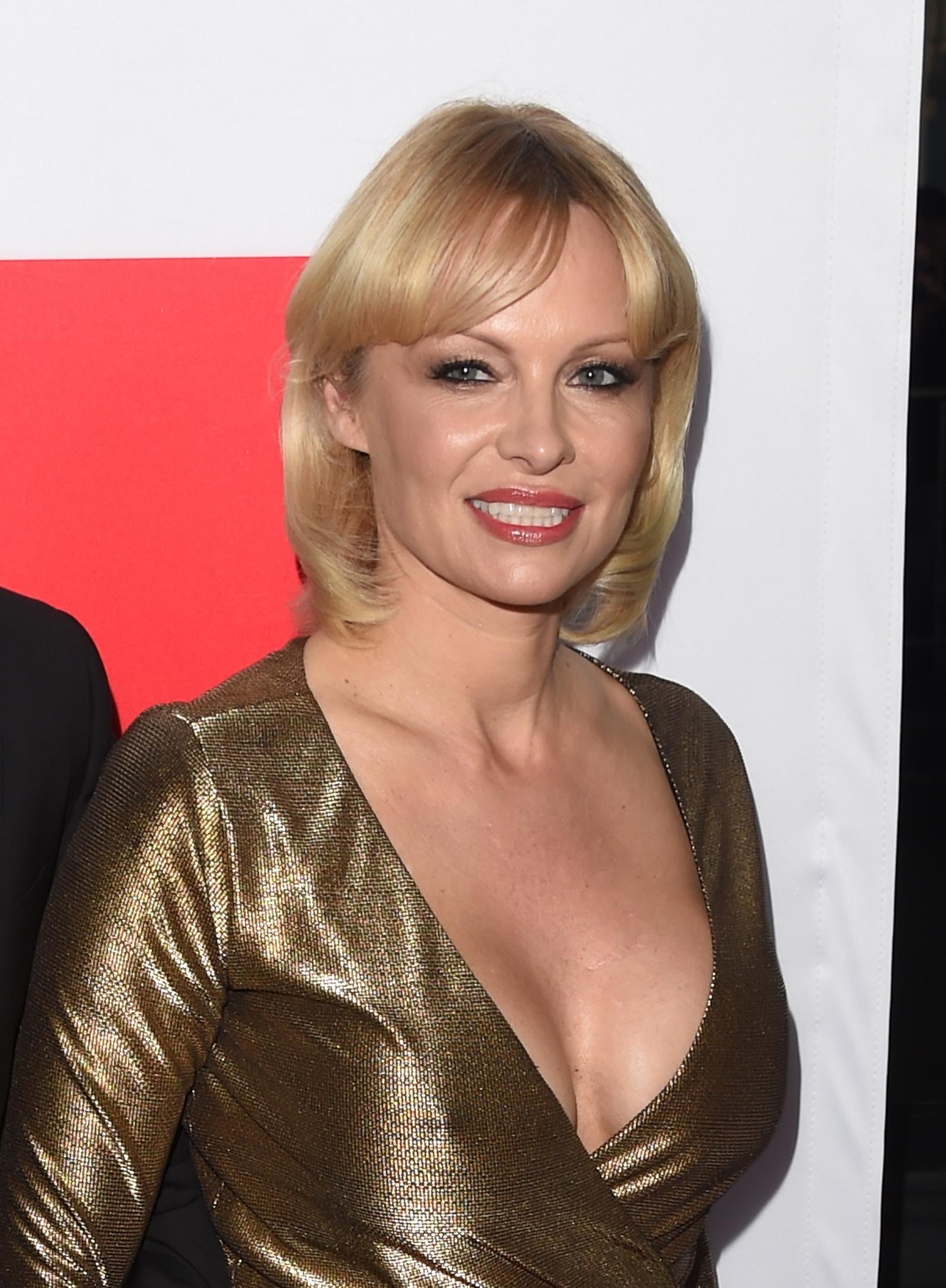 Pamela Anderson requests meeting with Vladimir Putin to ... Pamela Anderson