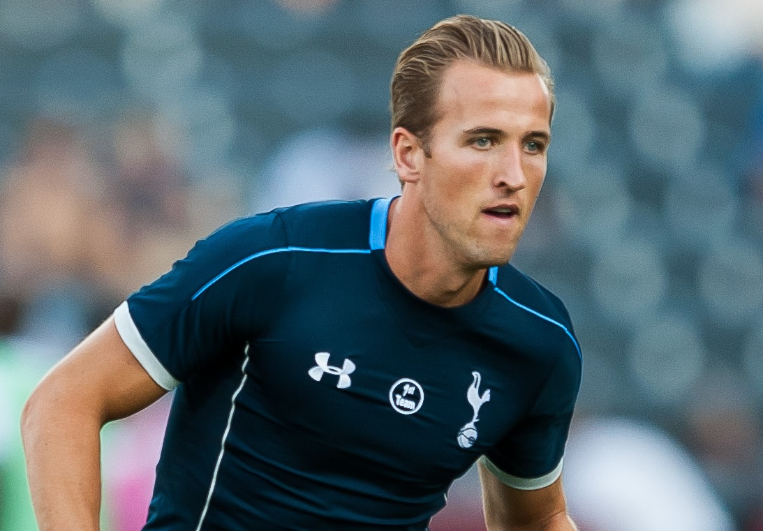 Harry Kane enjoyed a stunning 2014-15 campaign which saw him named the ...