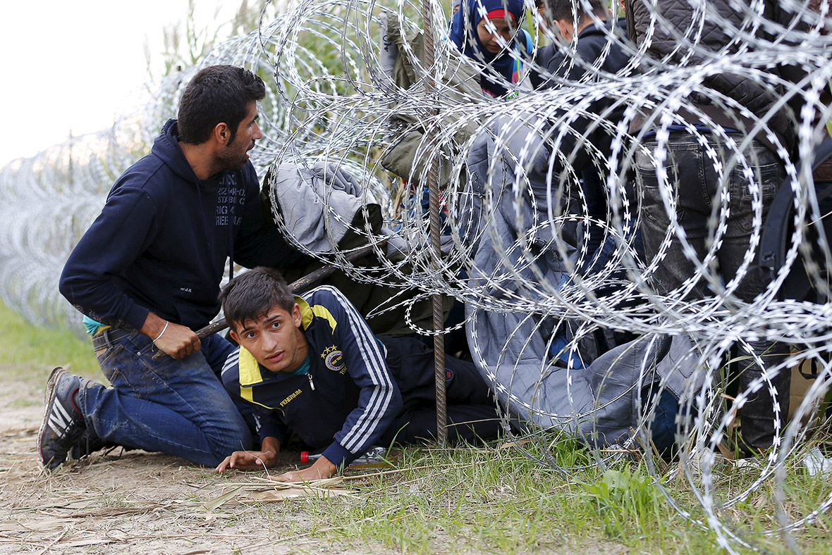 http://d.ibtimes.co.uk/en/full/1455626/migrants-hungary-eu-fence.jpg
