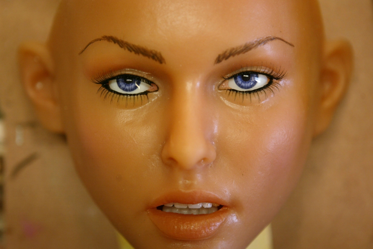 Rise of the sexbot: By 2050, sex with robots will be more