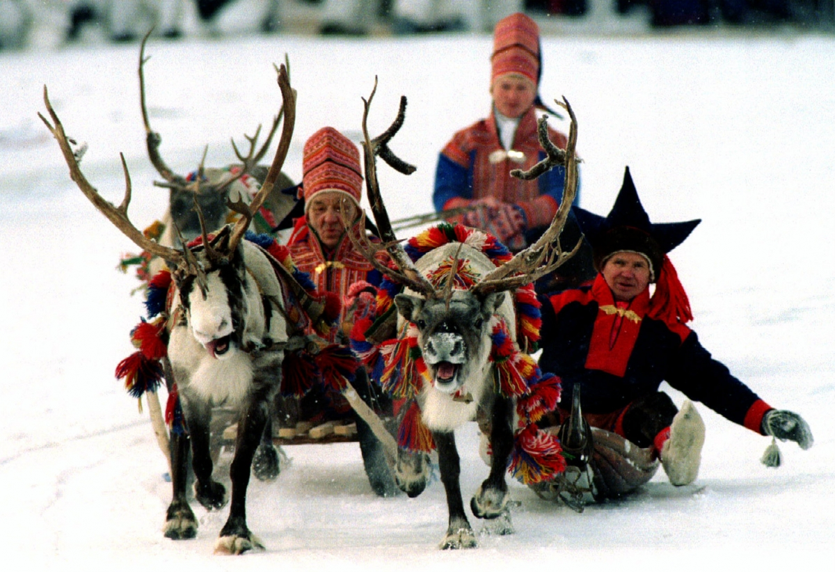COP21: How climate change is destroying the Sami way of ...