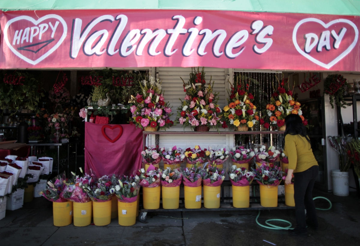 Valentine's Day 2016: UK to import about 5.7 million roses from India this year to meet demand