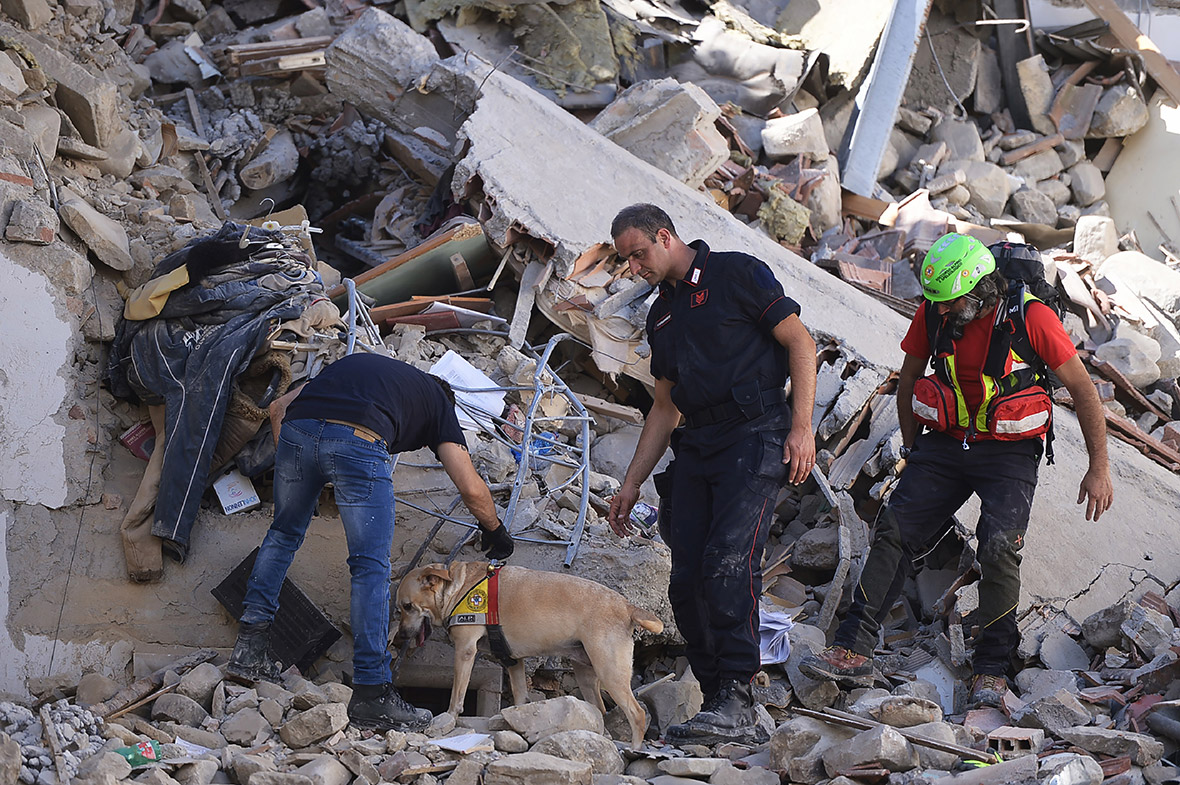 Girl of ten pulled alive from Amatrice earthquake rubble