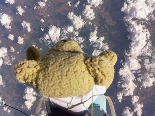 ted Bull Stratos