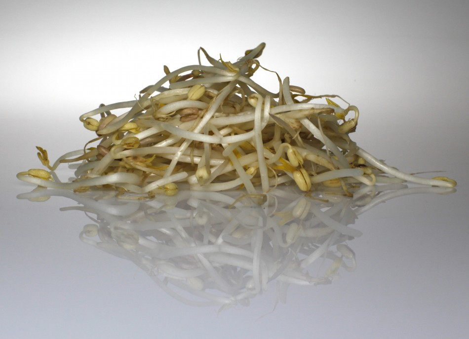 Locally-grown bean sprouts have been acknowledged as the cause of the outbreak that has killed 29 and sickened nearly 3,000.