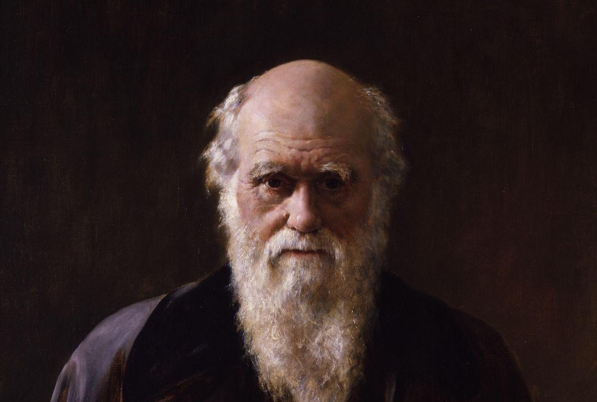 Darwins theory of evolution video