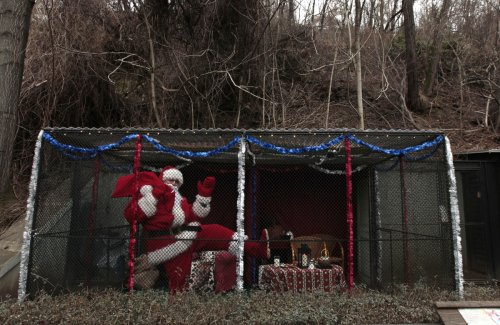A man dressed as Santa Claus poses in a cage during a performance at Prague Zoo. The traditional belief in the Czech Republic is that the Baby Jesus, Jezisek, brought children gifts. The zoo held a performance to deride the increasingly popular