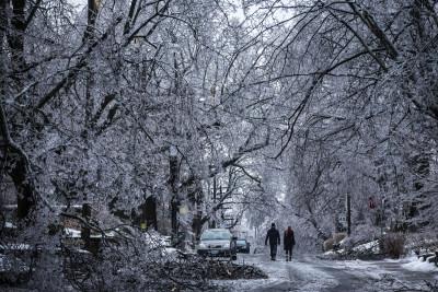 Canada snow