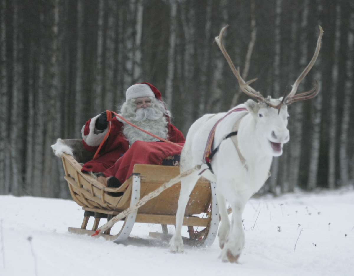 A man dressed as Santa Claus rides his sleigh as he prepares for Christmas on the Arctic Circle in Rovaniemi, northern Finland.