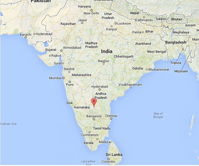 Train inferno in south India kills 23