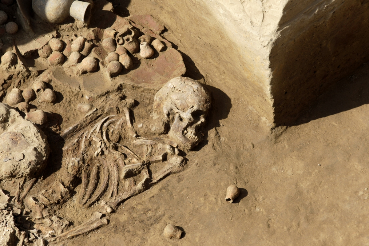 Pictured is the tomb of a priestess of the Moche culture recently excavated in Peru. Bronze Age graves unearthed in Siberia have couples buried holding hands.