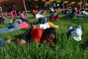 Eating grass