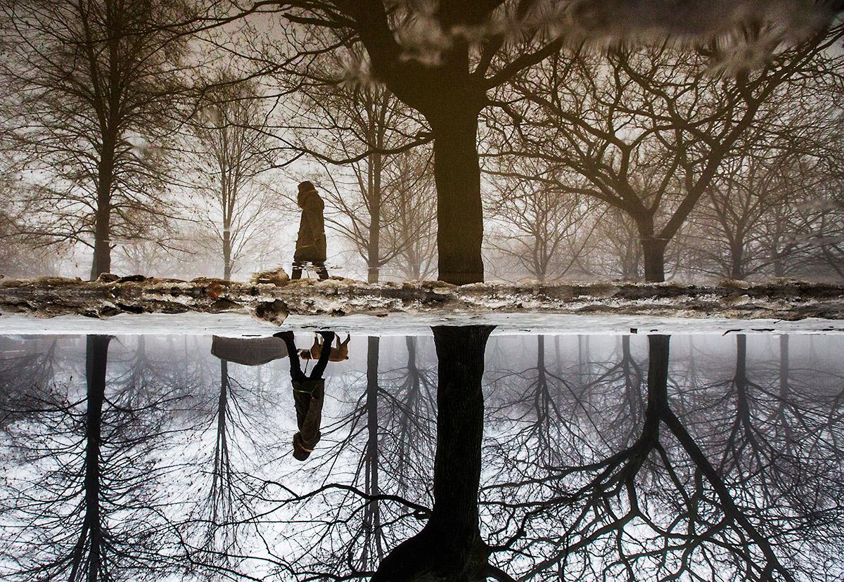 puddle reflect