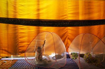 bangkok tent