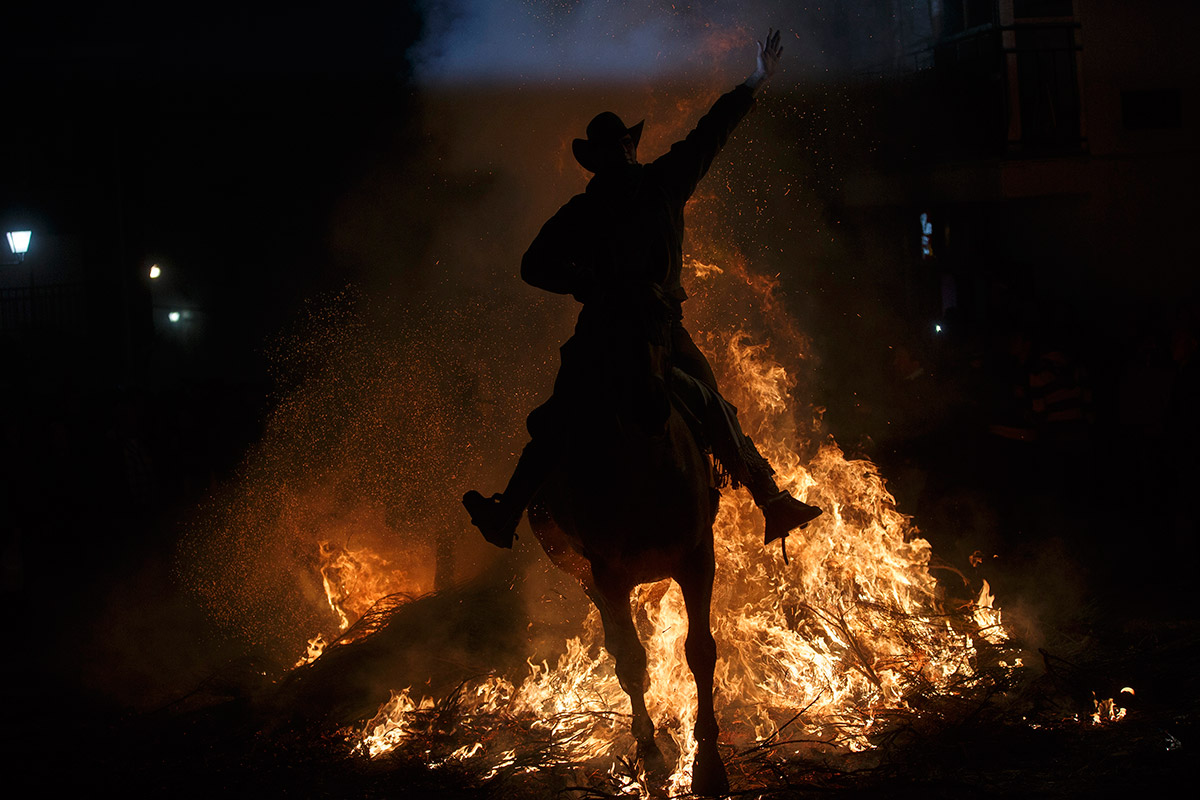 fire horse silhouette
