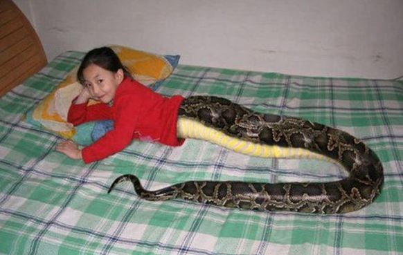Thailand Snake Girl Post is a Fake
