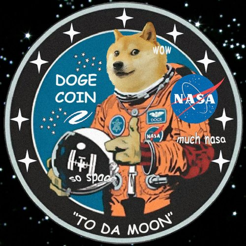Dogecoin NASA
