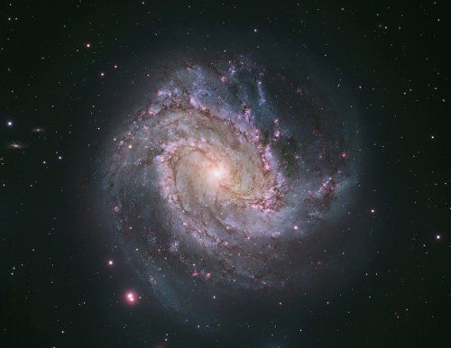 Latest supernova spotted