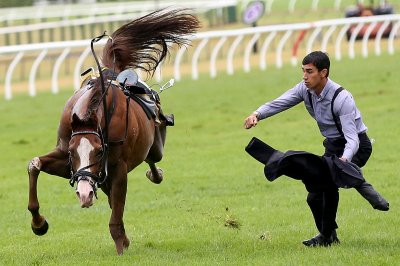 jockey horse