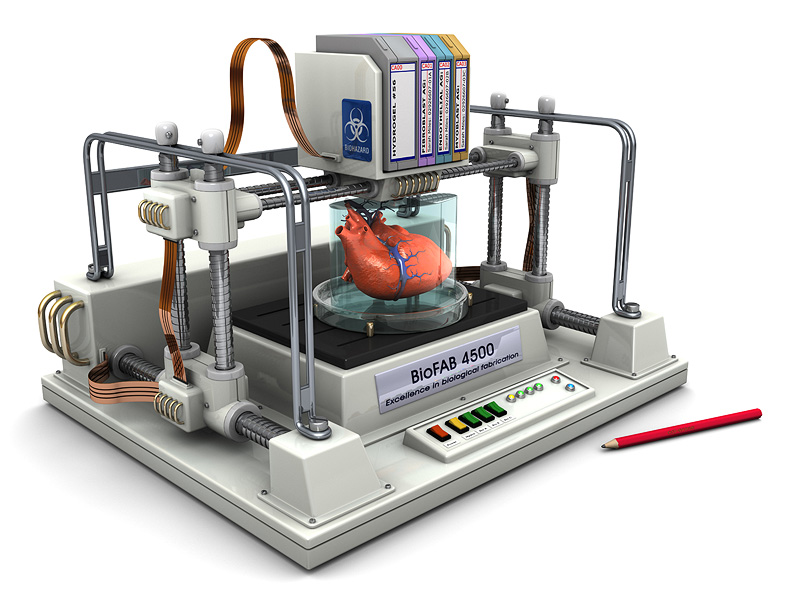 3D Printer that can bioprint human organs