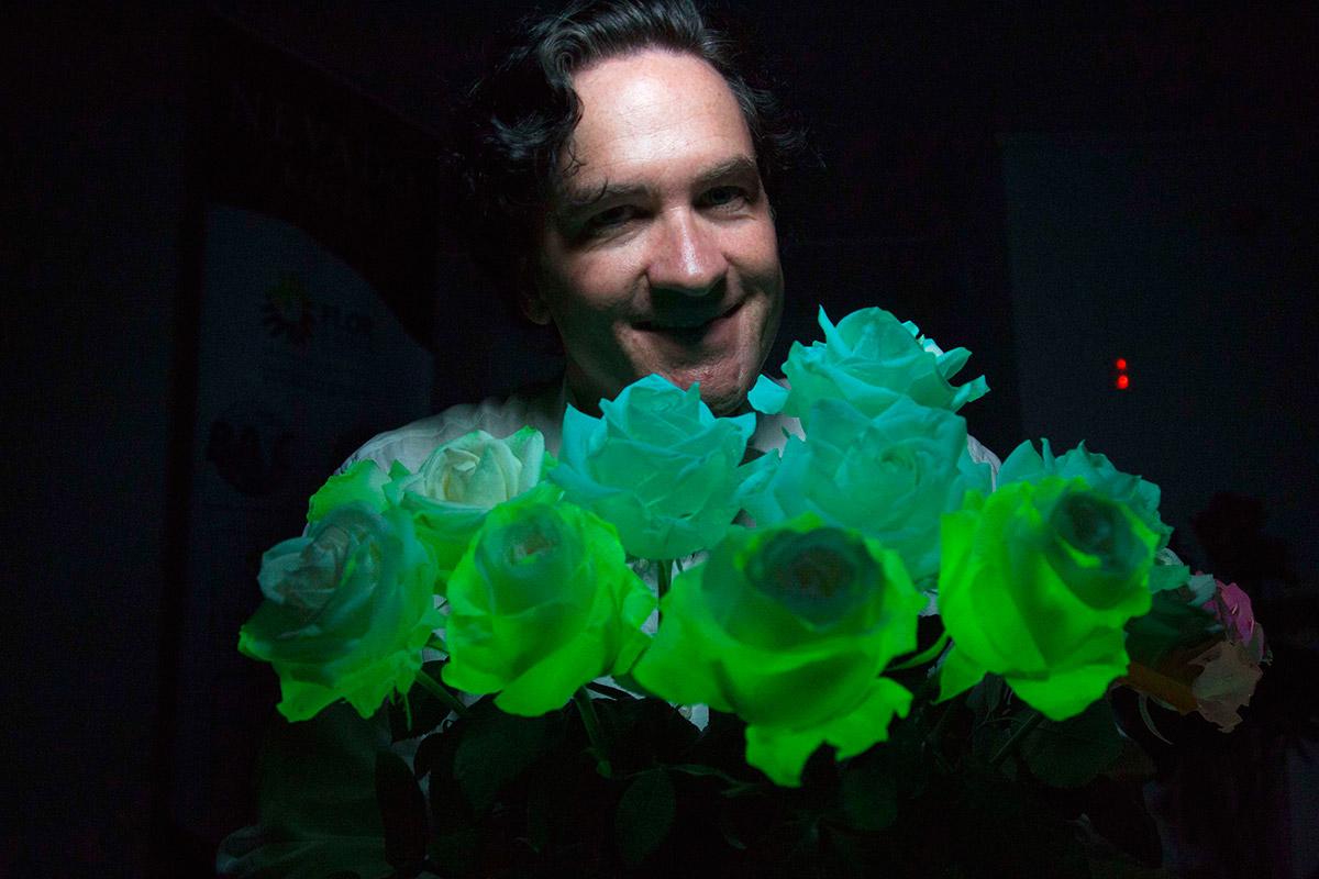 fluorescent roses