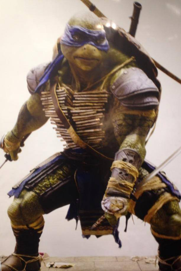 teenage-mutant-ninja-turtles.jpg?w=500&h=750&l=50&t=40