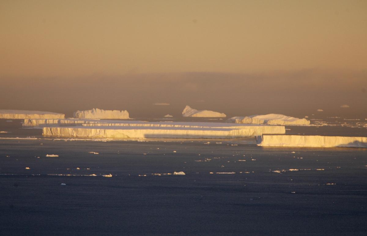 Antarctic Ice Shelves